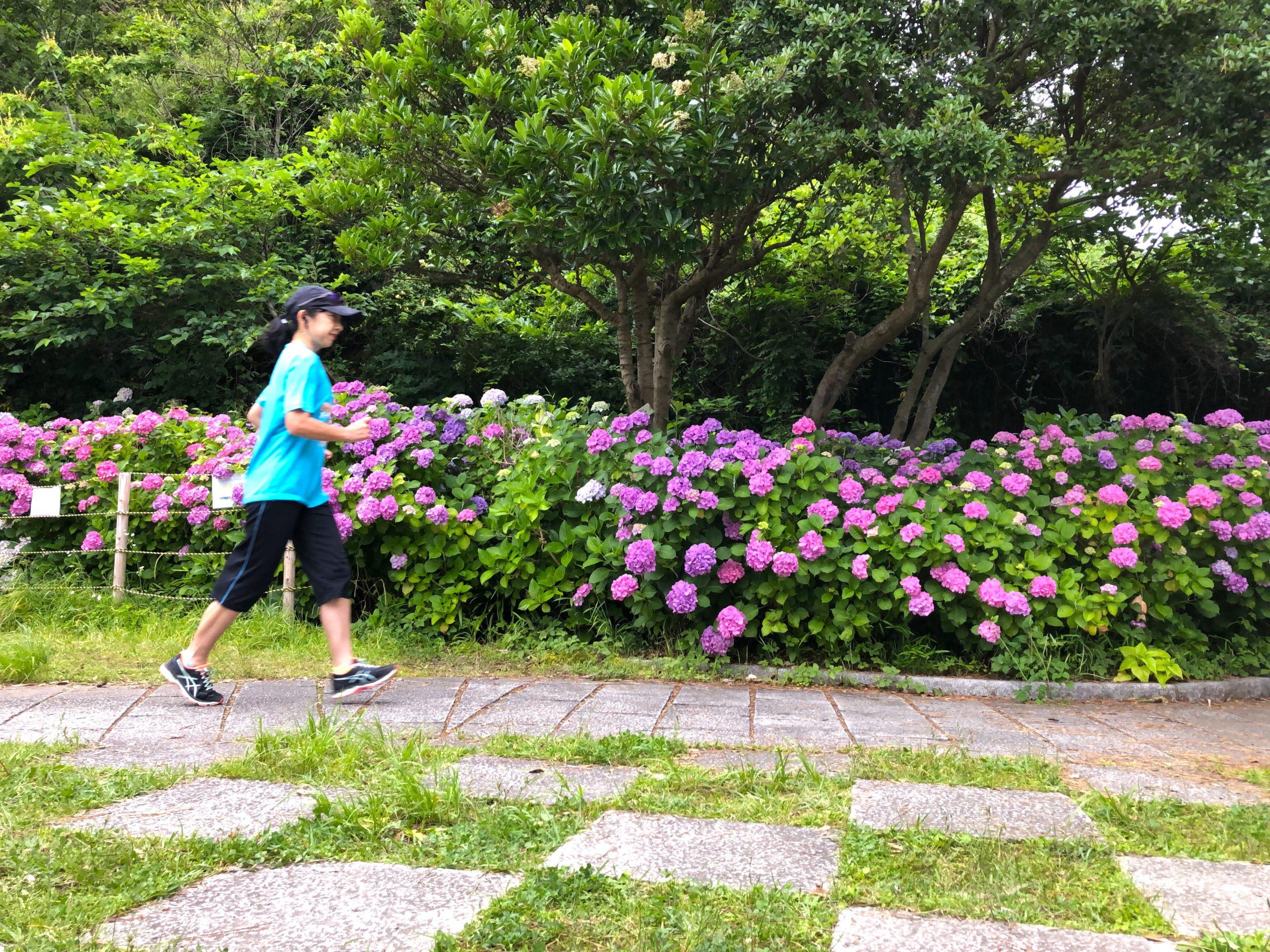 稲村ヶ崎公園でウォーキングからスタート!