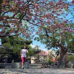 本覚寺へお花見ラン