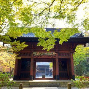 妙本寺山門