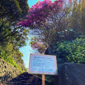 公園の入り口には利用自粛の立て看板