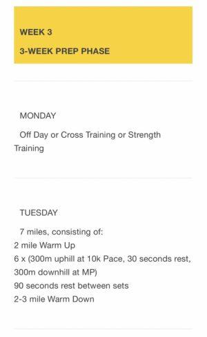 ボストンマラソントレーニングプラン3週目前半の最新版