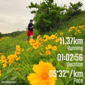 """11.37kmのエアロビックラン(5'32"""")"""