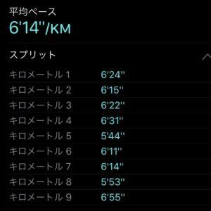 "【8.13kmのイージーラン(6'14"") 】"