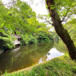 散財が池森林公園