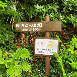 葉山のあじさい公園にマムシ注意の看板