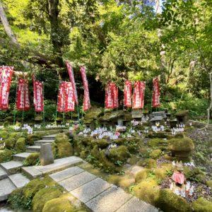 佐助稲荷神社の狐たち