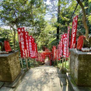 佐助稲荷神社の鳥居群