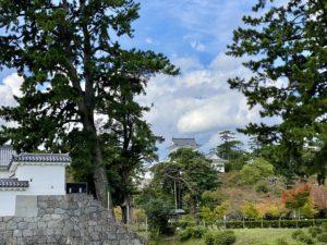 小田原城と紅葉