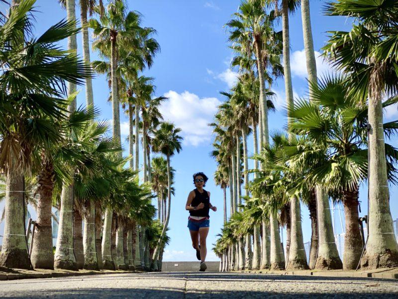 "【VRWC 5km Run)(5'33"")】逗子マリーナ"