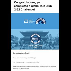 Tokyo 2.62 Challenge完走