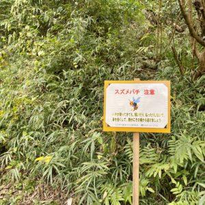 鎌倉中央公園のスズメバチ注意看板