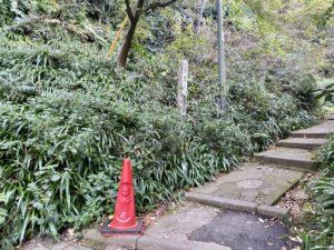 浄智寺から葛原岡ハイキングコースへ