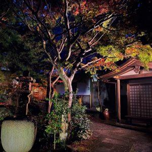 覚園寺のライトアップ