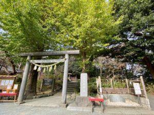 葛原岡神社の魔サル石