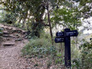 大仏ハイキングコース案内板1