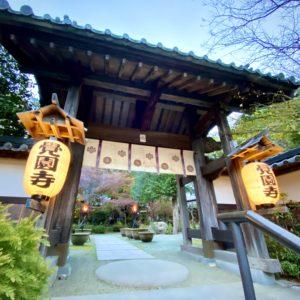 覚園寺の提灯