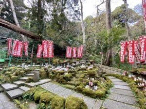 佐助稲荷神社の白狐