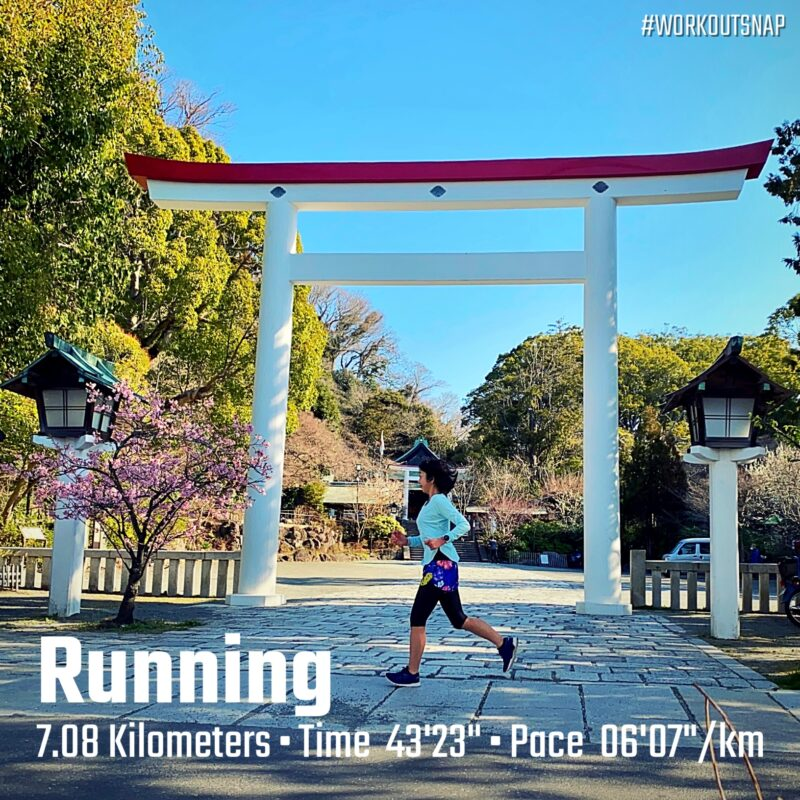 """7.08km(6'08"""") イージーラン【2021/2/23】in鎌倉宮"""