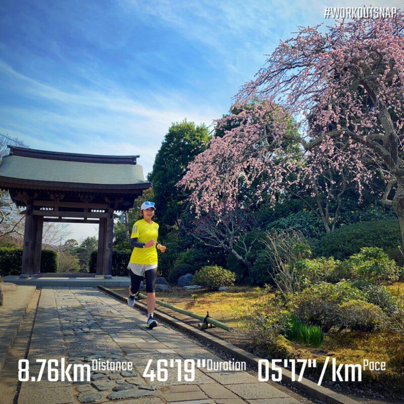 """8.76km(5'17"""") 疲労時ラン【2021/2/27】in海蔵寺"""