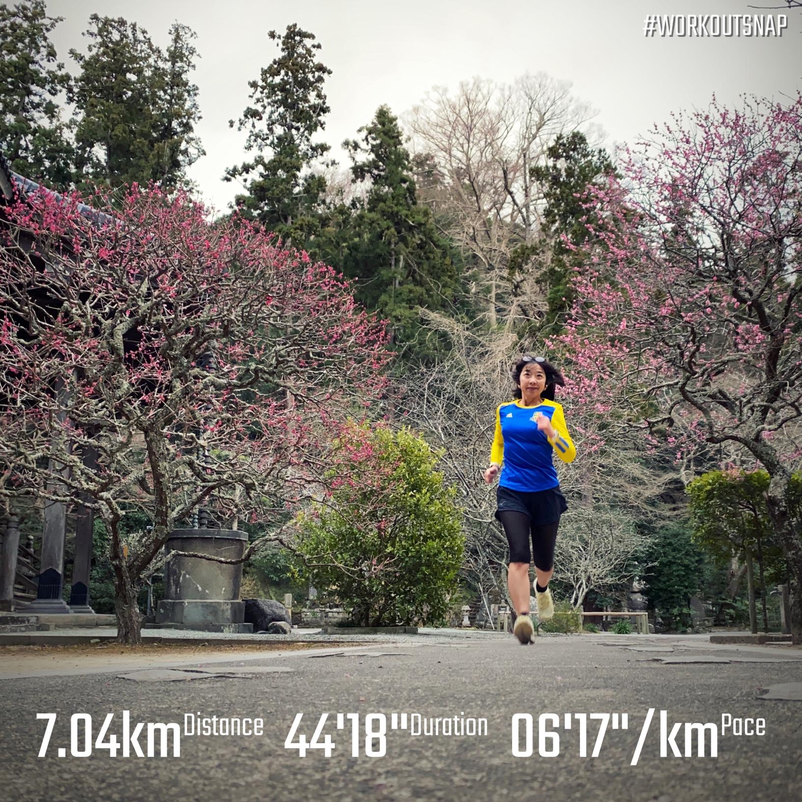 "7.04km(6'18"") イージーラン【2021/2/24】in妙本寺"