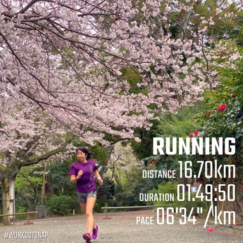 "16.7km(6'35"") お花見ラン【2021/3/25】in源氏山公園"