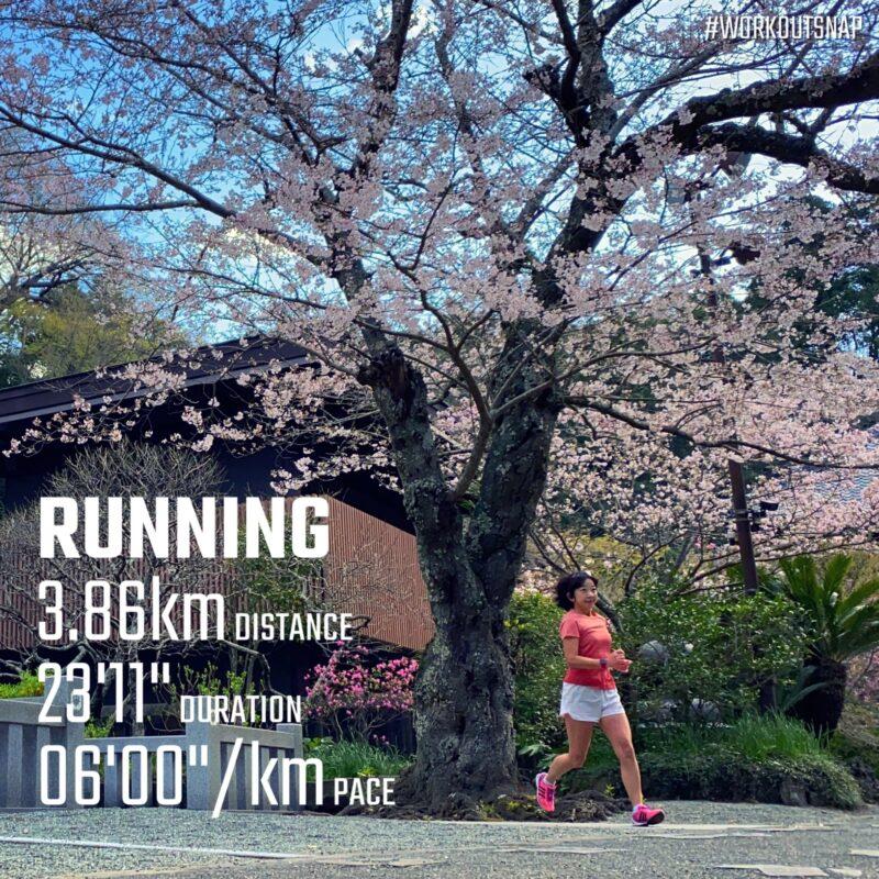 "3.86km(6'00"") イージーラン【2021/3/23】in妙本寺"