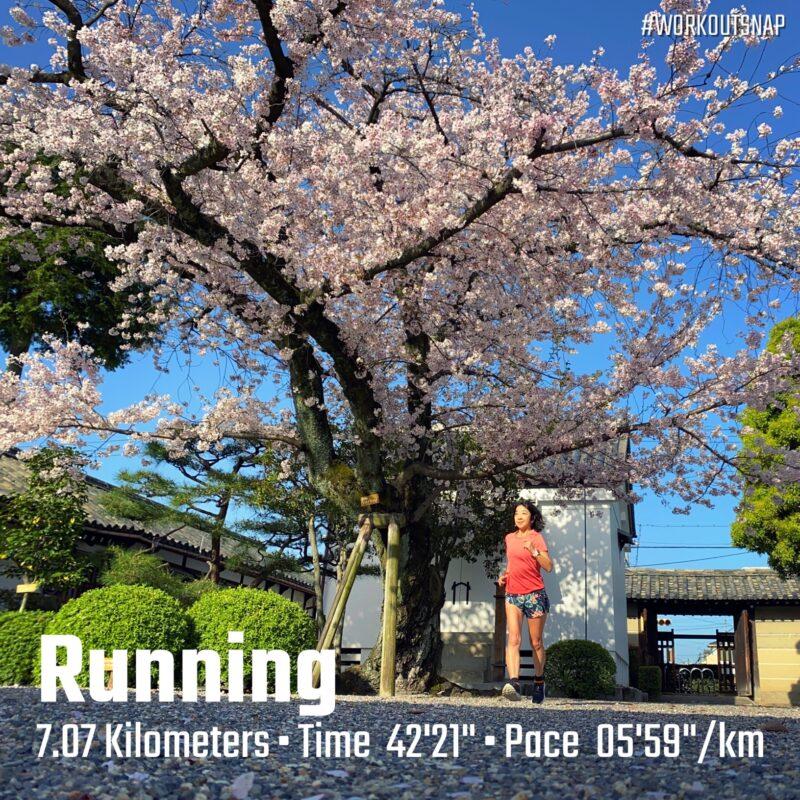"""7.07km(6'00"""") イージーラン【2021/3/31】in東寺"""