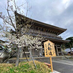 光明寺は令和の大改修