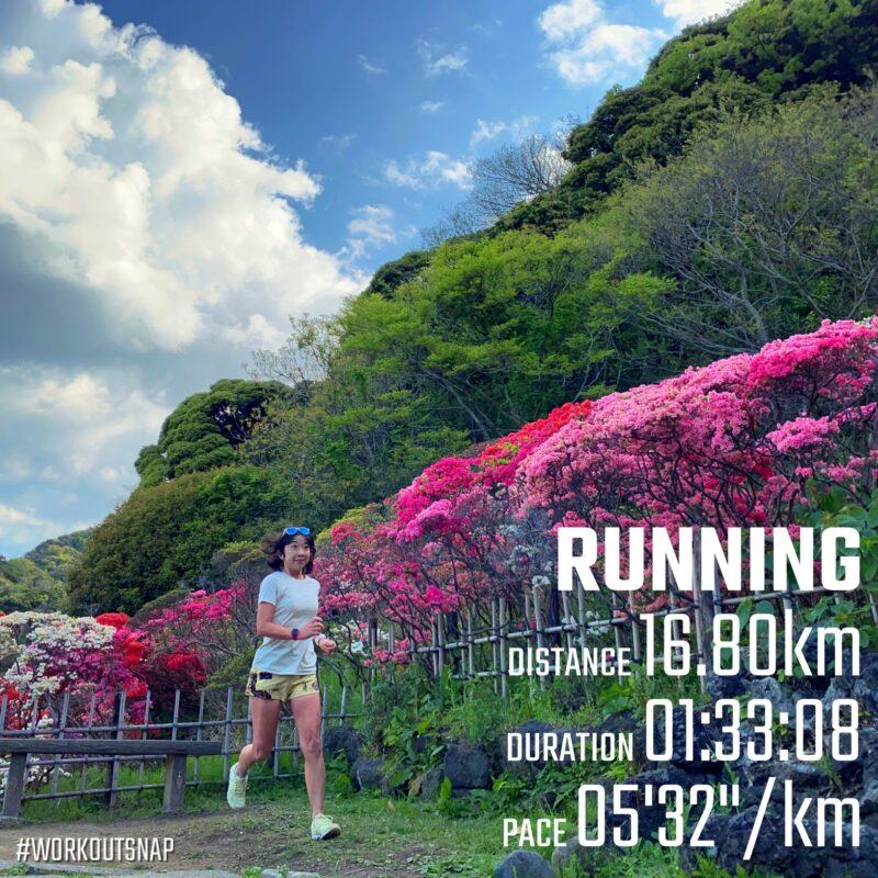 "16.8km(5'33"") ツツジラン【2021/4/8】in葉山花の木公園"