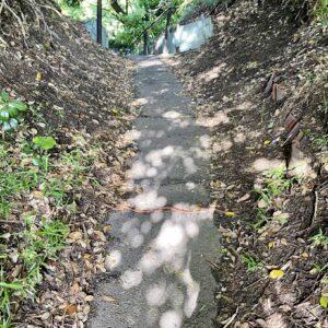 稲村ヶ崎から極楽寺への道