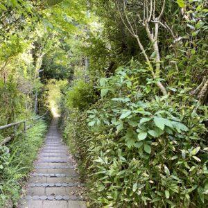 稲村ヶ崎の急階段2