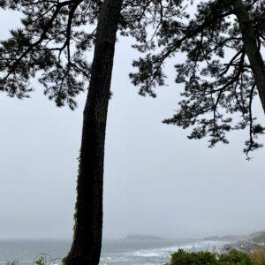 稲村ヶ崎公園から見た江の島