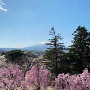 弘前公園本丸から見た岩木山
