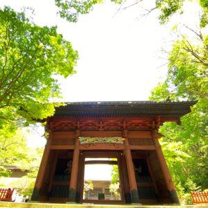 妙本寺の新緑の二天門