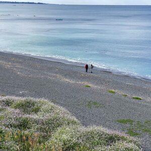 長者ヶ崎のビーチ4