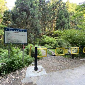秋川渓谷の林道