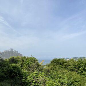 光明寺の裏山からの眺め