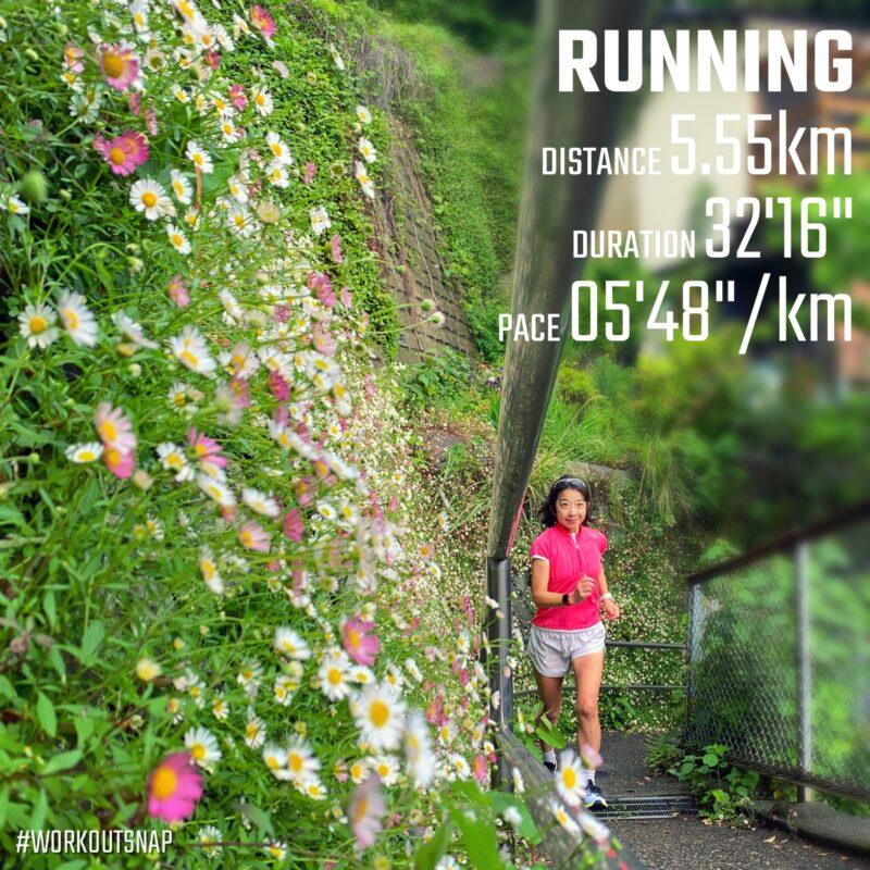 "5.55km(5'49"") 疲労時ラン【2021/5/6】in小坪"