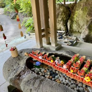鎌倉宮の紫陽花の花手水