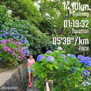"""6月24日(木)【14.1km(5'38"""")】inあじさい公園"""