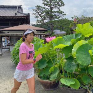 本覚寺で蓮ラン