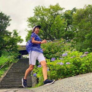 東慶寺の紫陽花ラン