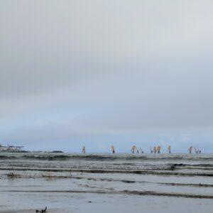 材木座海岸のヨット