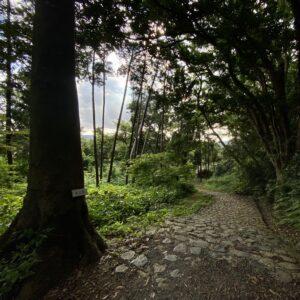 源氏山公園を鎌倉駅へ
