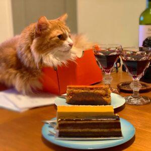 レオとケーキとワイン