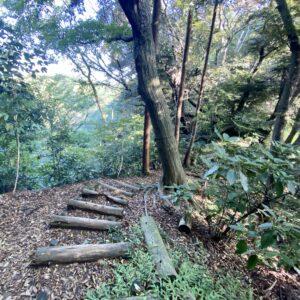 散在ガ池森林公園散策路