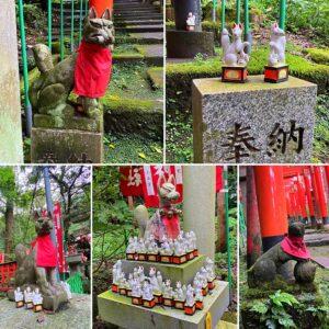 佐助稲荷神社の狐さま