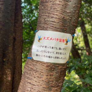鎌倉中央公園近くの「スズメバチ注意」の貼り紙